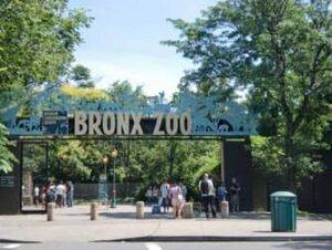 Bronx Zoo New Yorkissa