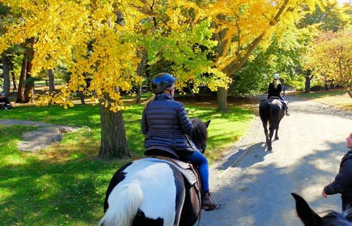 Ratsastus Central Parkissa - ratsailla